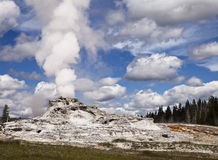 Geyser In Yellowstone Park Royalty Free Stock Photography