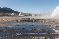 Geyserfield El Tatio -智利 免版税库存照片