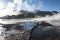 Geyserfield el tatio - Chile Royalty Free Stock Images