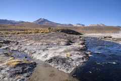 Geysers. Del tatio on Andes, Chile Stock Image
