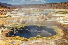 Geysers andinos o Junthuma, formado pela atividade geotérmica, Bolívia Fotos de Stock Royalty Free