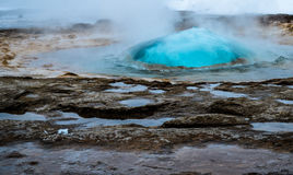 Geysers av Island Arkivfoto