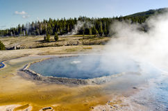 Geysers de parc national de Yellowstone Photographie stock