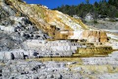 Geysers 5 de parc national de Yellowstone Image stock