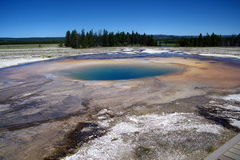 Geysers 20 de parc national de Yellowstone Photo stock