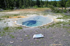 Geysers 22 de parc national de Yellowstone Images stock