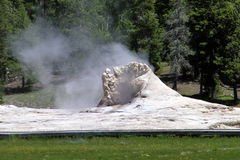 Geysers 26 de parc national de Yellowstone Image stock
