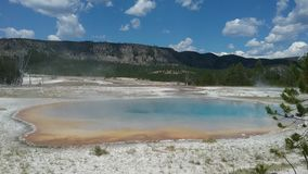 Geysers de Yellowstone Photos libres de droits