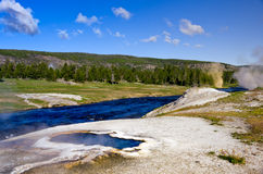 Geysers do parque nacional de Yellowstone Fotografia de Stock