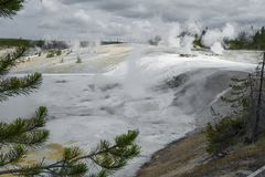 Steaming geysers in Yellowstone. Geysers dot the landscape of white mineral runoff  in Yellowstone National Park, Wyoming, USA Stock Images