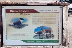 Geysers EL Tatio, Χιλή Στοκ φωτογραφίες με δικαίωμα ελεύθερης χρήσης