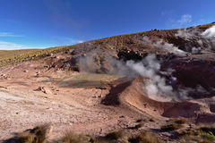Geysers expelling vapor in the early morning. Small geysers expelling vapor in the early morning Royalty Free Stock Photos