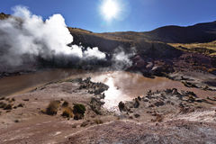 Geysers expelling vapor in the early morning. Under a beautiful warming sun Royalty Free Stock Images
