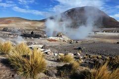 Geysers för El Tatio i Chile Royaltyfria Foton