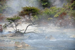 Geysers and hot springs are located in many places Royalty Free Stock Photo