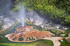 Geysers and hot springs are located in many places stock photos