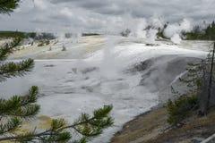 Geysers i Norris Geyser Basin Yellowstone National parkerar Arkivbilder