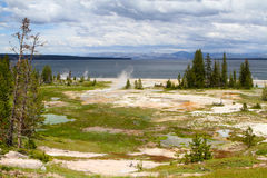 Geysers on the shore of Lake Yellowstone Royalty Free Stock Photos