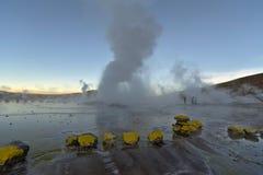Geysers vapor columns at sunrise. Geysers expelling huge vapor columns at sunrise Royalty Free Stock Images