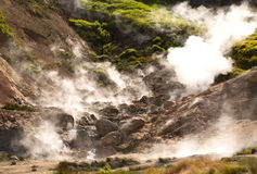 Geysers on a volcano Royalty Free Stock Image