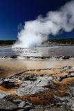 Geysers in Yellowstone Royalty Free Stock Images