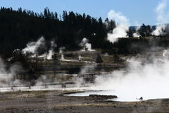 Geysers in Yellowstone Stock Photos