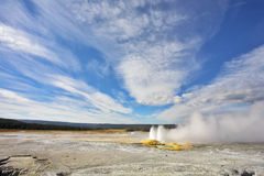 Geysers  in Yellowstone Park Royalty Free Stock Photography