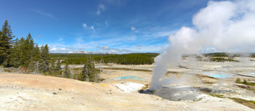 Geysertips på den Yellowstone nationalparken Royaltyfri Foto