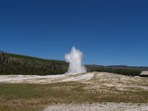 Geysir bei Yellowstone Lizenzfreies Stockbild