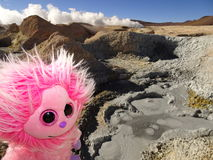 Geysir in bolivia. Geysir and my toy in Bolivia Royalty Free Stock Image
