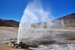 Geysir dans le désert Image libre de droits