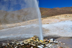 Geysir Puchuldiza. The active Geysir Puchuldiza near Colchane in the Atacama- Chile stock image