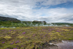 Geysir Stock Photography