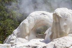 Geysir in Yellowstone Stockfotografie