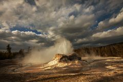 Geysir in Yellowstone lizenzfreie stockbilder