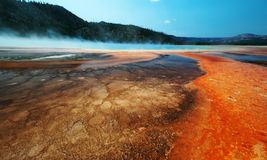 Geysir in Yellowstone, Amerika stockfotografie