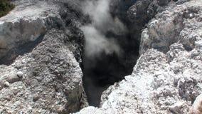 Geysire wässern heiße Quellen auf Hintergrund des Bodens in Neuseeland stock video