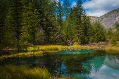 Geysirgebirgssee mit blauem Lehm Stockbilder