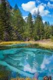 Geysirgebirgssee mit blauem Lehm Stockbild