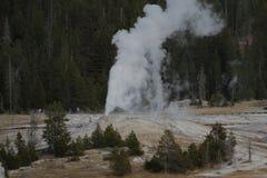 Geyzers av den Yellowstone nationalparken Royaltyfria Foton