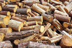 Gezaagd brandhout Royalty-vrije Stock Foto