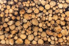 Gezaagde die logboeken in een stapel bij de zaagmolen worden gestapeld Close-up Achtergrond royalty-vrije stock foto
