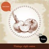 Gezeichnete Illustration der Zwiebel Hand Retro- Hintergrund der Weinlese mit Hand gezeichneten Skizzenzwiebeln Stockfoto