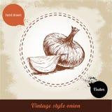 Gezeichnete Illustration der Zwiebel Hand Retro- Hintergrund der Weinlese mit Hand gezeichneten Skizzenzwiebeln Lizenzfreie Stockfotos
