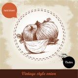 Gezeichnete Illustration der Zwiebel Hand Retro- Hintergrund der Weinlese mit Hand gezeichneten Skizzenzwiebeln Stockfotos