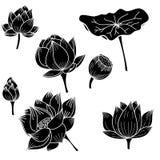 Gezeichnete Lotosblume des Kreises Hand Stockbilder