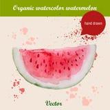 Gezeichnete Scheibe des Aquarells Hand der Wassermelone Stockfoto