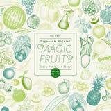 Gezeichnete Vektorillustration der Früchte und der Beeren Hand Retro- graviertes Artfahnendesign Sein kann Gebrauch für Menü, Auf Lizenzfreie Stockfotos