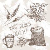 Gezeichneter Biersatz des Vektors Hand Stockbild