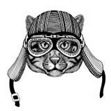 Gezeichnetes Bild des Wildkatze-Fischens catHand des tragenden Motorradtiersturzhelms für T-Shirt, Tätowierung, Emblem, Ausweis,  Lizenzfreies Stockbild